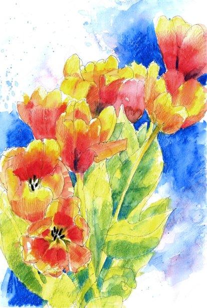 Tulips fading
