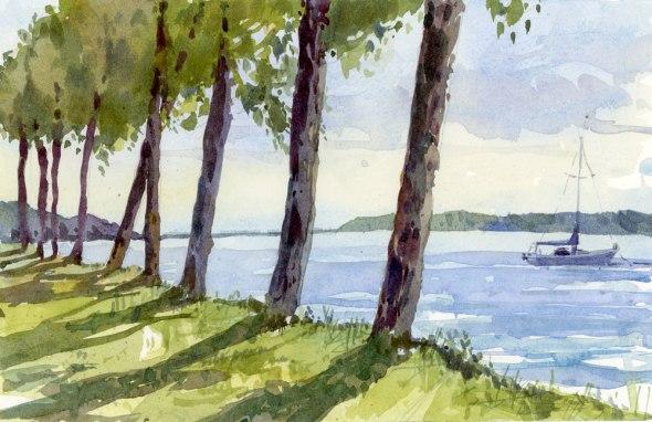 Baie D'urfeTrees