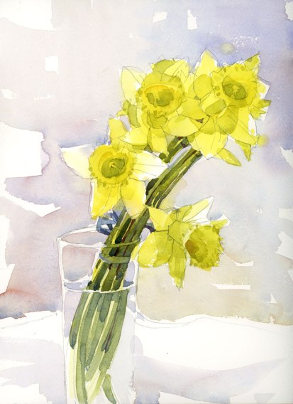 DaffodilsOpen