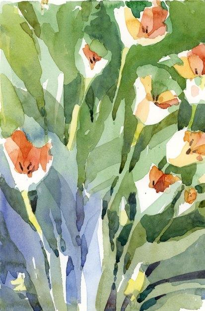 TulipsOpen