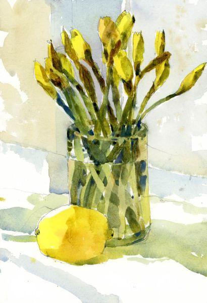 DaffodilDay