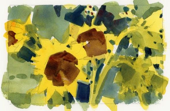 SunflowersB