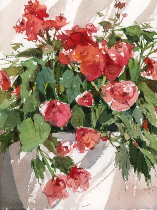 BegoniasBrush