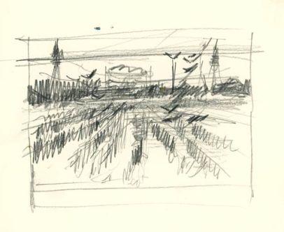 CornBirds_Sketch