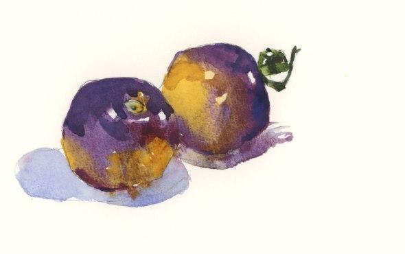 TwoPurpleTomatoes