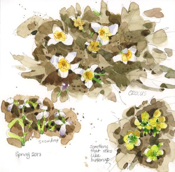SpringGarden1