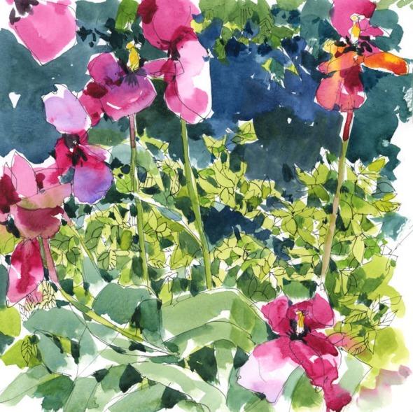 TulipsSpirea