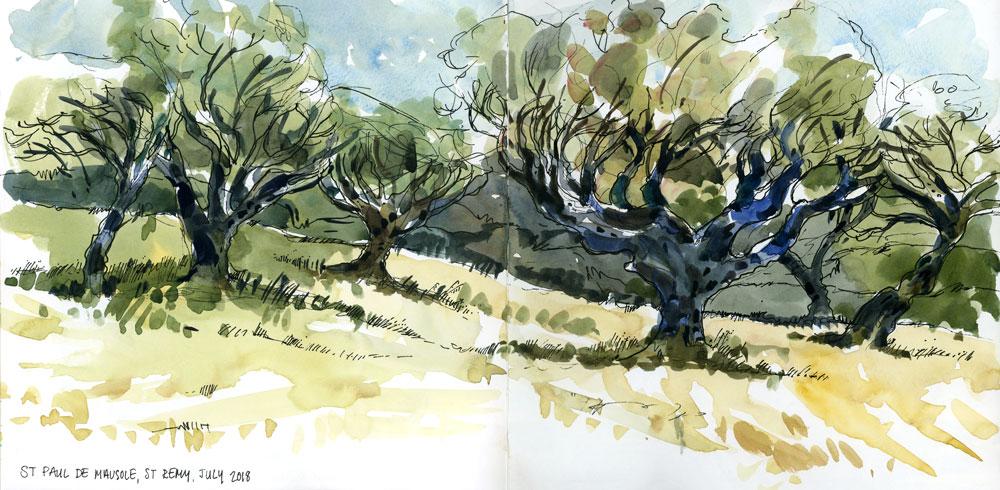 VanGoghsTrees