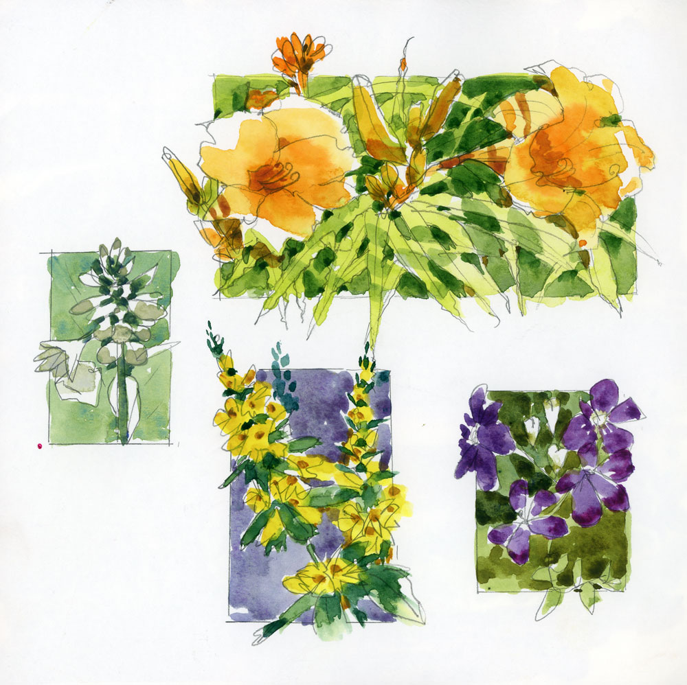 Leaves, stems and flowers: tips for garden sketchers